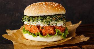 Burgers végétariens (pois chiches, haricots, carottes, oignons et poivron)
